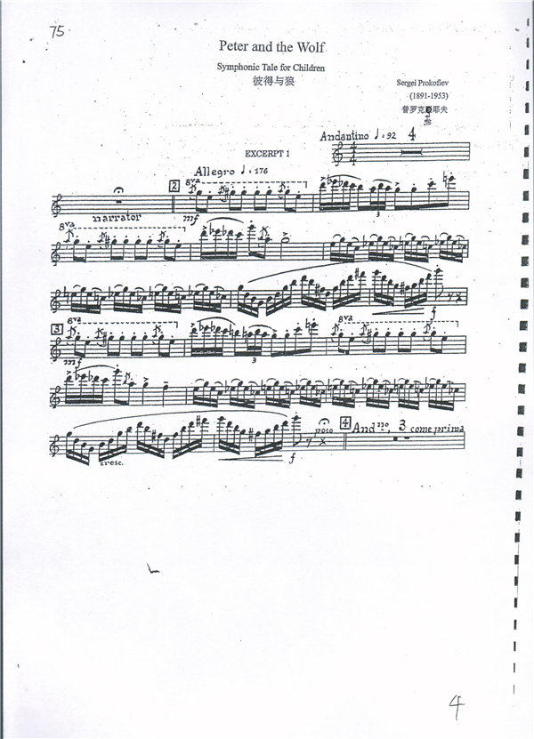 交响乐团 演出信息  小提琴 天鹅湖2段solo(首席必考) 中提琴 大提琴
